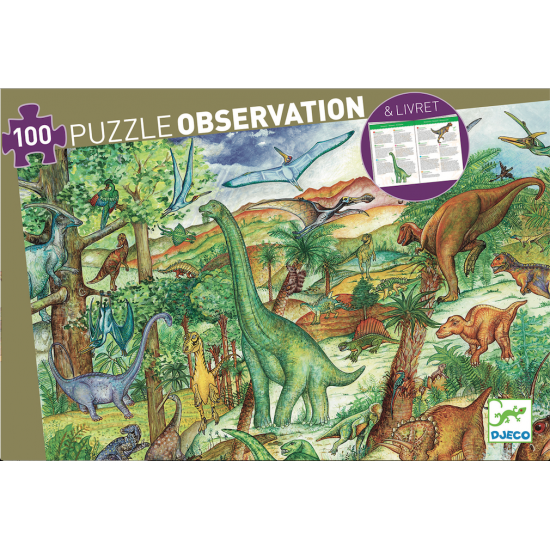 Puzzle Observation...
